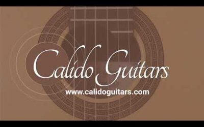 New Video! Yulong Guo Steel String Guitar, Cedar Double Top, Solid Ziricoté Back/Sides / DEMO