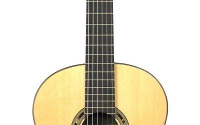 Kremona Rosa Morena – Flamenco – Solid Spruce top, Indian Rosewood Back/sides – Includes Kremona Gig Bag