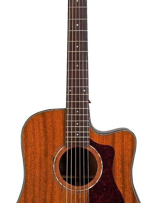 Guild Guitars D-120CE Dreadnought Acoustic Guitar, Natural Gloss, All Solid Woods , includes Guild Premium Gig Bag
